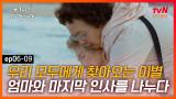 디마프 EP.06-09 엄마의 마지막, 그 어느 때보다 평온한 얼굴에 가슴이 미어지는 나문희 #tvNSTORY