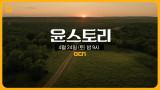[윤스토리] 대한민국 최초 아카데미 여우조연상 노미네이트된 배우 윤여정의 이야기