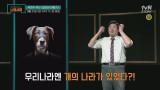 [다음이야기] 우리나라 기록에 존재하는 거인국 이야기?! 곽재식 박사의 '걸리버 여행기'