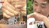 동현의 손과 혀끝에서 완성된 진상품 벌꿀!