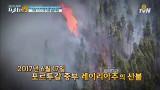 포르투갈 최악의 산불! 6시간을 버텨낸 생존법은?