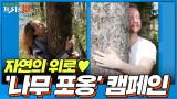 자연이 주는 따뜻한 위로♥ ′나무 포옹′ 캠페인 [우울의 늪에 빠진 당신에게 19]
